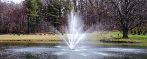Both fountain and compressor type aeration